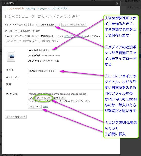 wordpress pdf ファイル ダウンロード