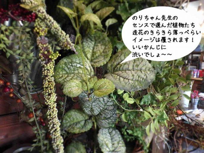 のりちゃん先生の センスで選んだ植物たち 造花のきらきら薄っぺらい イメージは覆されます! いいかんじに 渋いでしょ~~